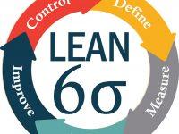 lean6s